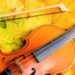 Geige Laub Oktoberklassik quadrat 1.1
